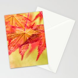 Arm In Arm Stationery Cards