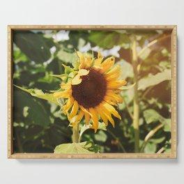 Sunflower Shine Serving Tray
