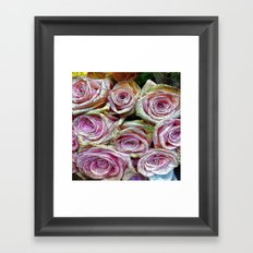 :: Rose is a Rose :: Framed Art Print