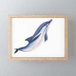 Striped baby dolphin Framed Mini Art Print
