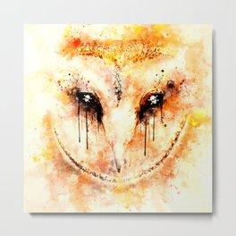 barn owl wsstd Metal Print