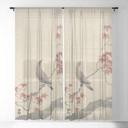 Japanese Maple Songbird  Sheer Curtain