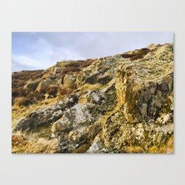 Welsh landscape Canvas Print