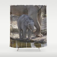 baby elephant Shower Curtains featuring Elephant Baby by MehrFarbeimLeben
