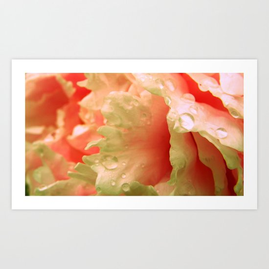 Drops of Blush Art Print