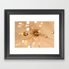 Queen Anne's Lace in Gold Framed Art Print