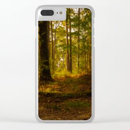 Peaceful Morning in Mississippi Clear iPhone Case