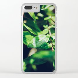 Rain Drops On Plants Clear iPhone Case