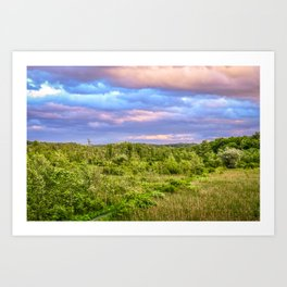 Bird sanctuary at sunset in Upstate New York Art Print