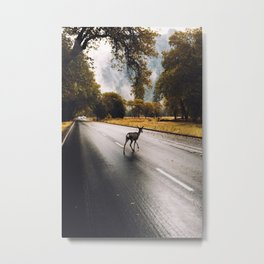 Fawning over Yosemite Metal Print