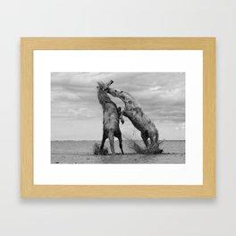 Horses 2 Framed Art Print