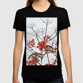 WILDFLOWERS in RED T-shirt