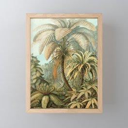 Vintage Tropical Palm Framed Mini Art Print