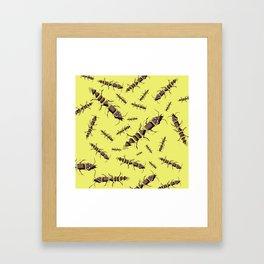 Ants erase and rewind Framed Art Print
