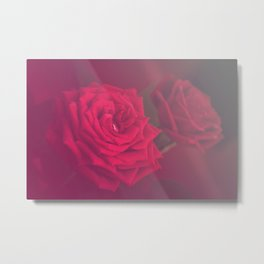 Red Rose in the mist Metal Print