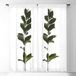 Tropical Leaves | Green | Minimalist Plant Art Blackout Curtain