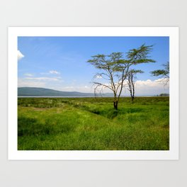 Lush Lake Nakuru Art Print