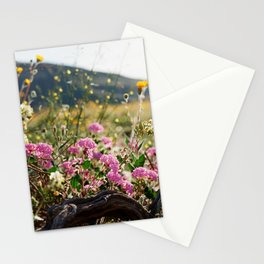 Anza-Borrego Superbloom 1 Stationery Cards