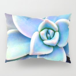 Bright Succulent Pillow Sham