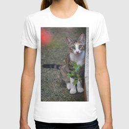 Little Liza the cat T-shirt