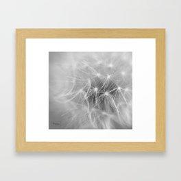 Softness 2018 Framed Art Print