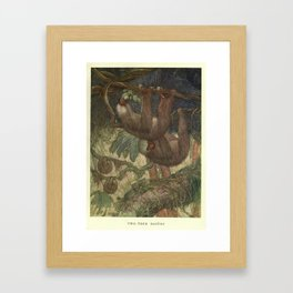 Vintage Sloth Painting (1909) Framed Art Print