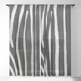 Close-up view of zebra fur animal skin - vintage abstract illustration pattern Sheer Curtain