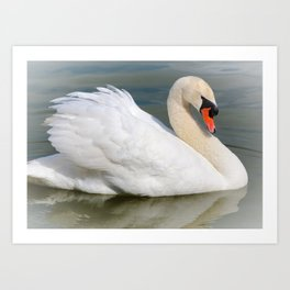 Demure Swan Art Print