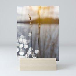 Inner Light - Before Sunset Mini Art Print