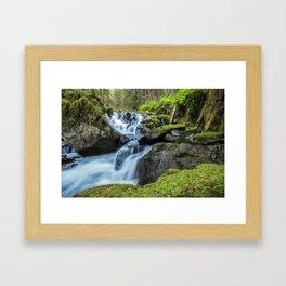 Rainforest Waterfall Framed Art Print