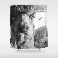 alpaca Shower Curtains featuring Alpaca by WoosterTheRooster