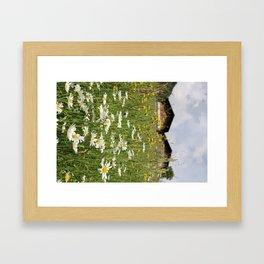 Flowers in the Alps Framed Art Print