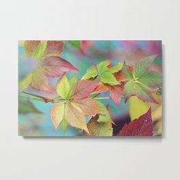 Colorful fall Metal Print