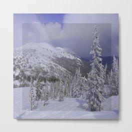 Winter day 11 Metal Print