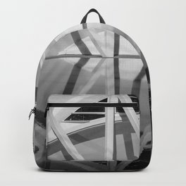 City of Arts and Sciences II by CALATRAVA architect Backpack