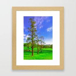 The Three Trees Framed Art Print