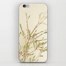 Waxflower iPhone & iPod Skin
