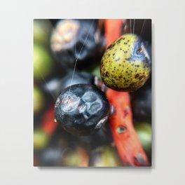 Colorful berries Metal Print