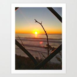 Uncaged Sunset Art Print