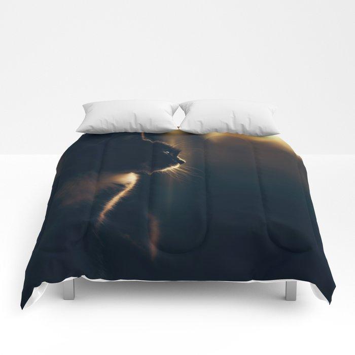 Daydreamer Comforters