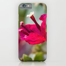 Take Time Slim Case iPhone 6s