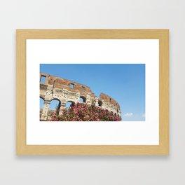 Roman History Framed Art Print
