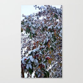Snow on Fall Leaves Canvas Print
