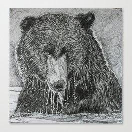water bear Canvas Print