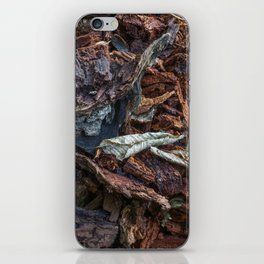 The old tree iPhone Skin