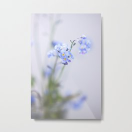 FORGET-ME-NOT I Metal Print