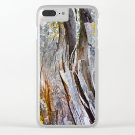 Relic of the Forest Clear iPhone Case