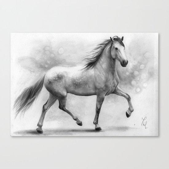 Horse II - pencil drawing Canvas Print
