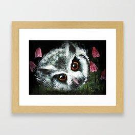 Owl & Horse Hair Mushrooms Framed Art Print