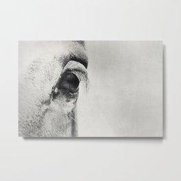 HorSe (V2 grey) Metal Print